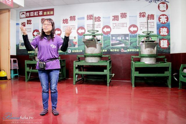 製茶體驗-南投日月潭-必玩景點-亮點茶莊-吉臣紅茶-貓頭鷹之家